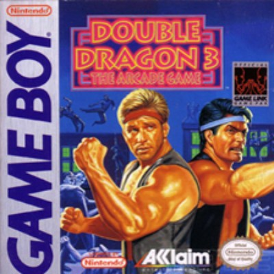Double Dragon III: The Arcade Game Cover Art