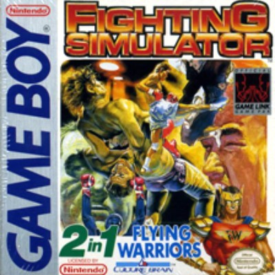 Fighting Simulator 2-in-1 Cover Art