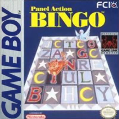 Panel Action Bingo Cover Art