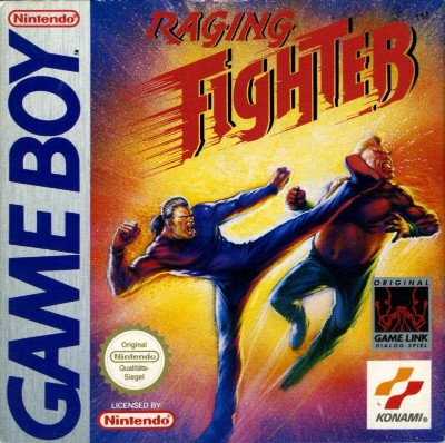Raging Fighter Cover Art