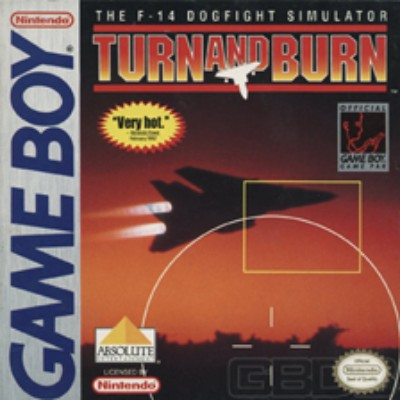 Turn and Burn: The F-14 Dogfight Simulator Cover Art