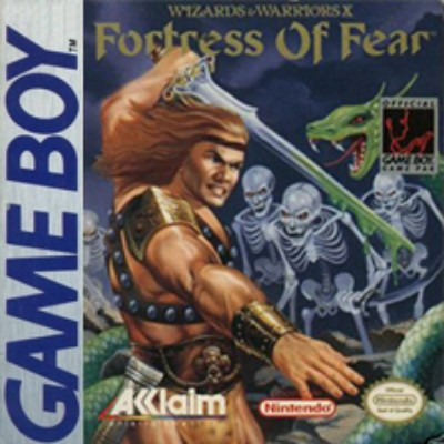 Wizards & Warriors X: Fortress of Fear Cover Art