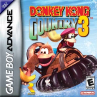 Donkey Kong Country 3 Cover Art