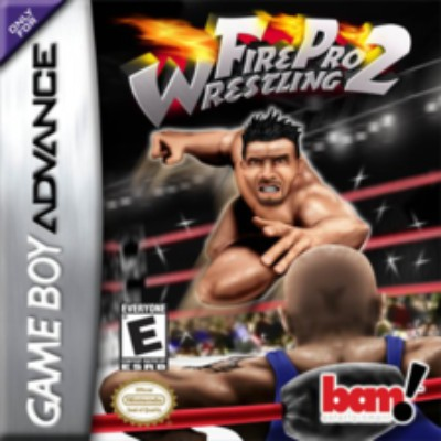 Fire Pro Wrestling 2 Cover Art