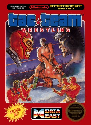 Tag Team Wrestling Cover Art
