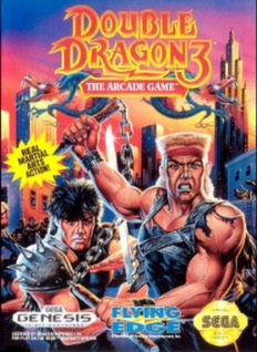 Double Dragon 3: The Arcade Game Cover Art