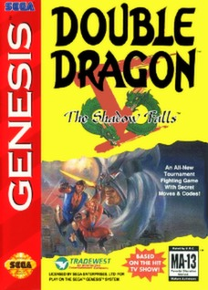 Double Dragon V: The Shadow Falls Cover Art