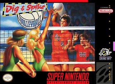Dig & Spike Volleyball Cover Art